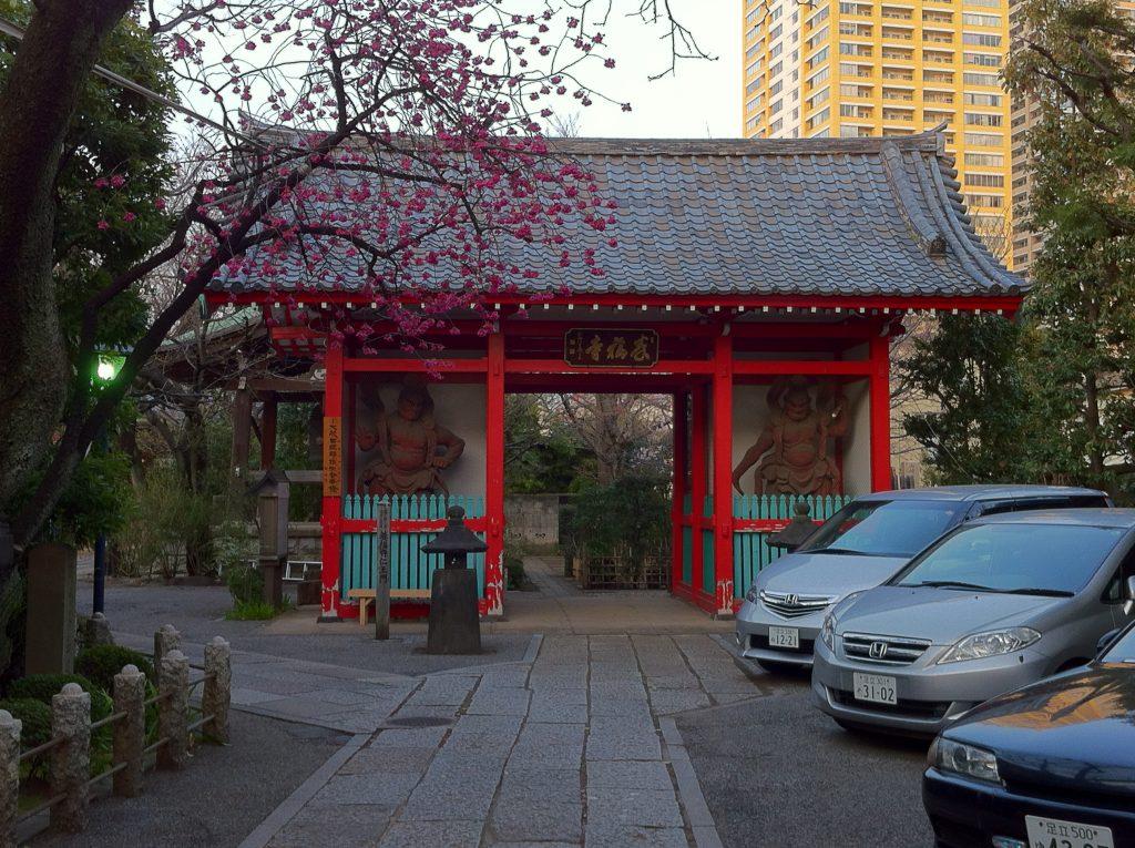 運慶作と伝わる仁王2体が安置されている仁王門と梅が美しい養福寺